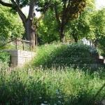 Landschaftsarchitektur Stuttgart - Links Grünfläche - Rechts Weg