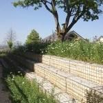 Hartenecker Höhe - Landschaftsarchitektur - Blick auf steine