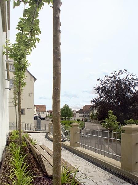 Landschaftsarchitekt Backnang - Blick auf die Straße