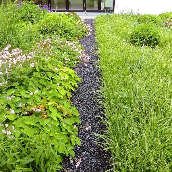 Grünfläche des Hausgartens der Familie B - Privat - Landschaftsarchitekt
