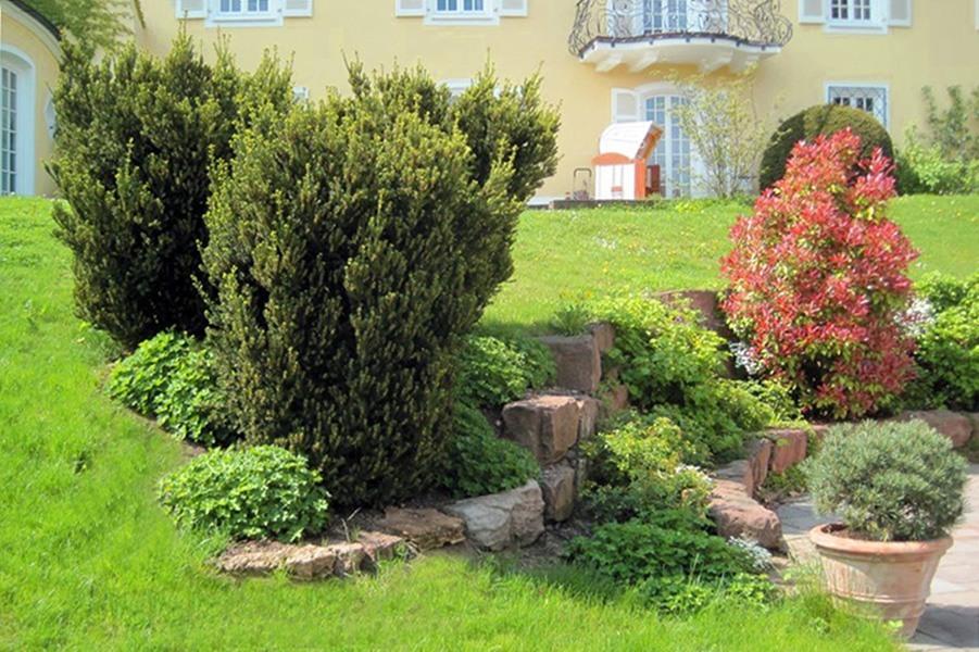 Hausgarten der Familie N. von unten auf die Steine - Landschaftsarchitektur Stuttgart Privat