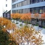 Blick von oben auf die Töpfe - Landschaftsarchitektur Stuttgart